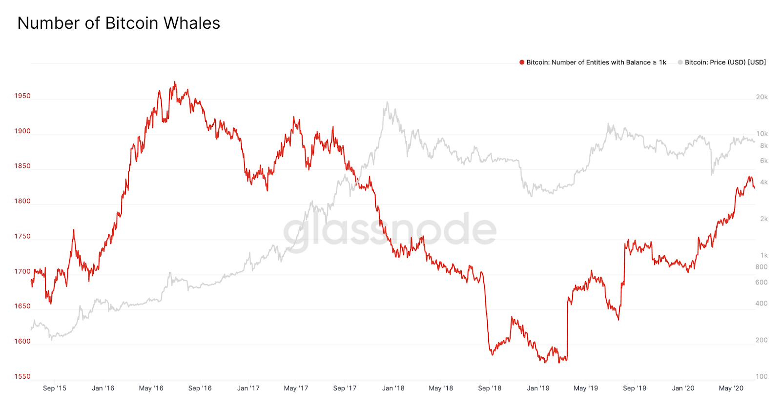 The number of Bitcoin whales increased substantially since March