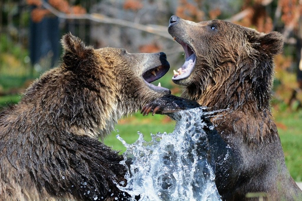 Holo (HOT) Follow Up 10: Bears Taking Charge to Crash Prices By 25%