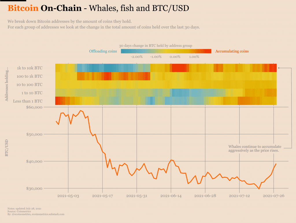Whales and small fishes have been accumulating Bitcoin