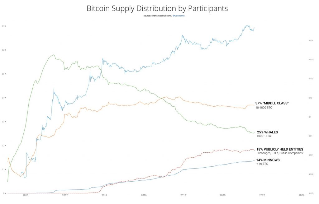 Bitcoin supply distribution. Source: Willy Woo / Woonomics
